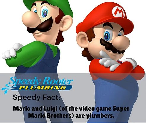Speedy Fact #9
