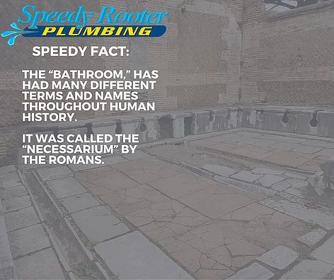 Speedy Fact #10